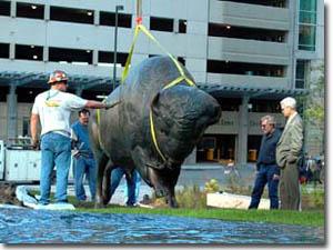 Buffalo Installation